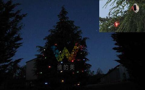圣诞树上的太阳能道钉